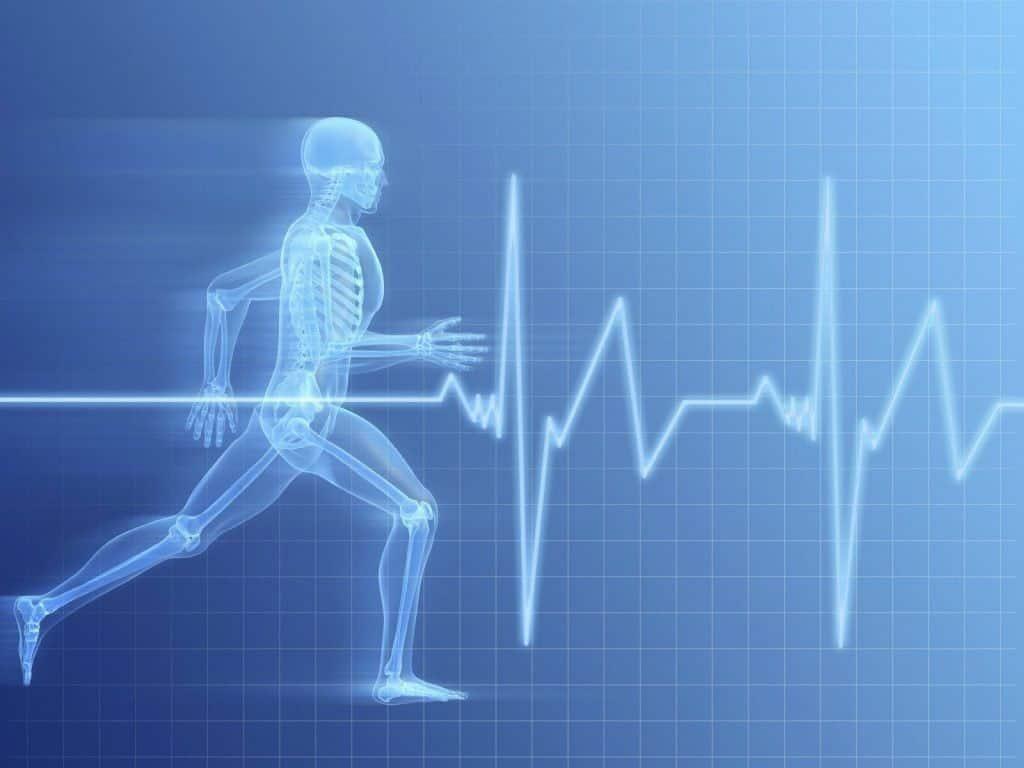 Como Fazer Cardio Para Secar Abdominal 2